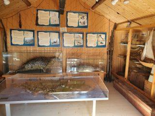 Hylkeenpyyntimuseo on mielenkiintoinen käyntikohde Tankarin reissulla. Museossa kerrotaan alueen hylkeenpyynnistä ja on mm. täytettyjä hylkeitä.
