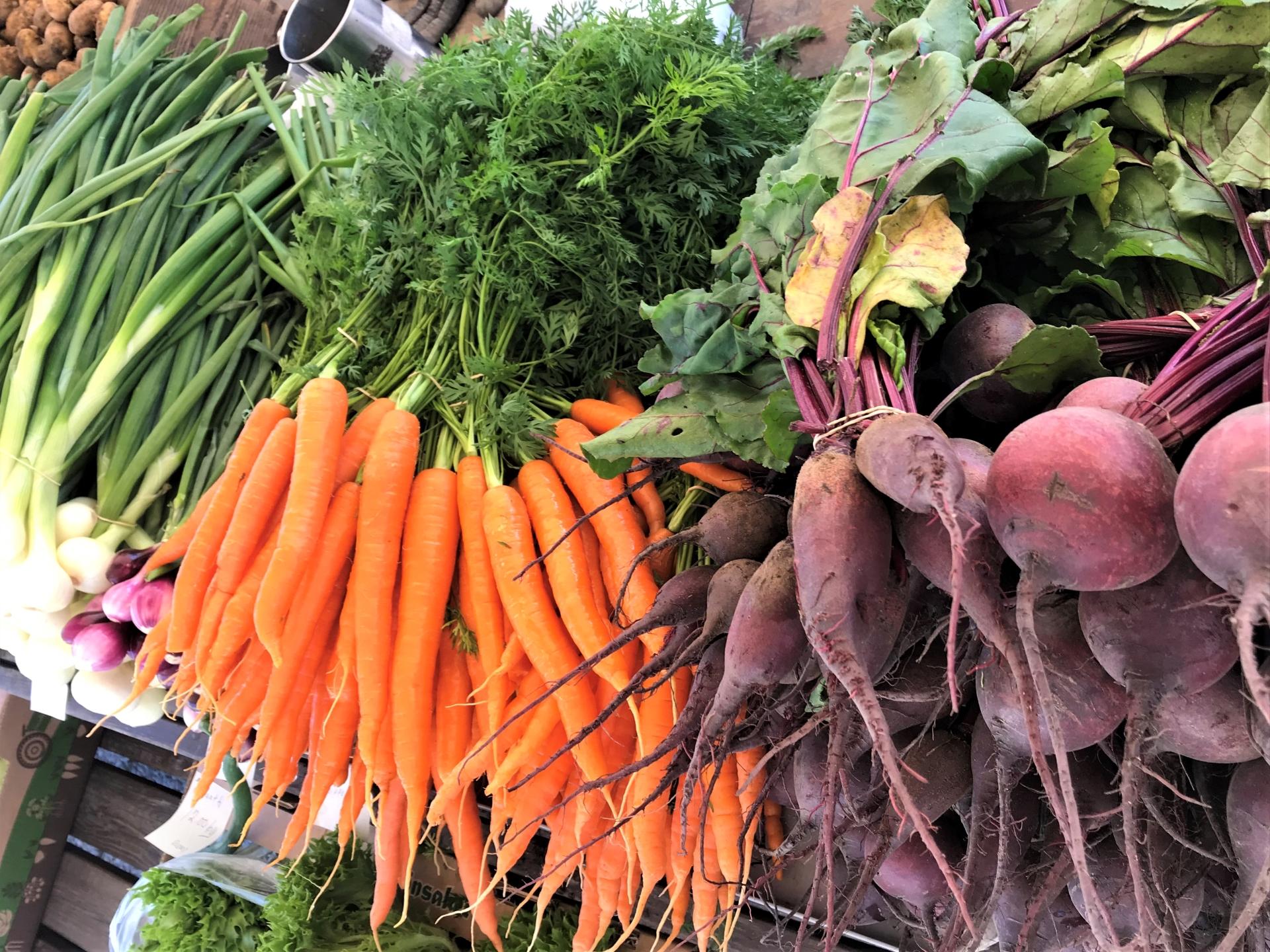 Porkkanoita ja punajuuria torilla. Kokkolan kauppatori on suosittu kauppapaikka. Kesäisin torilla järjestetään useita tapahtumia.