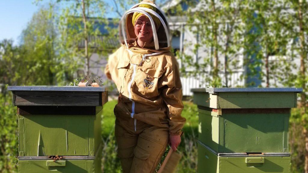 Ohjattuja elämyksiä Kokkolan Puotiniemessä mehiläistarhalla.